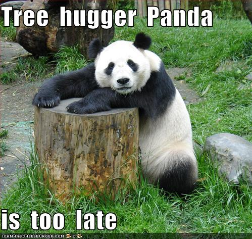 Wallpapers funny panda wallpapers pictures funny panda voltagebd Choice Image