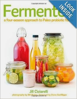 Fermented: A Four Season Approach by Jill Ciciarelli