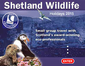 Shetland Wildlife - the No.1 choice. ATOL 9151