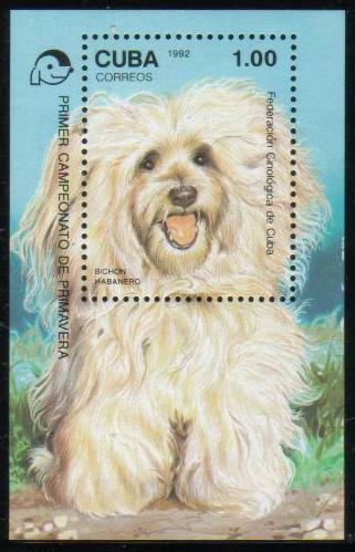 1992年キューバ共和国 ビション・ハバネーゼの切手シート