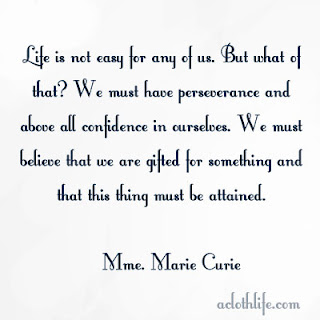 perseverence quote by marie curie
