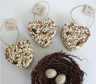 how to make bird seed rings