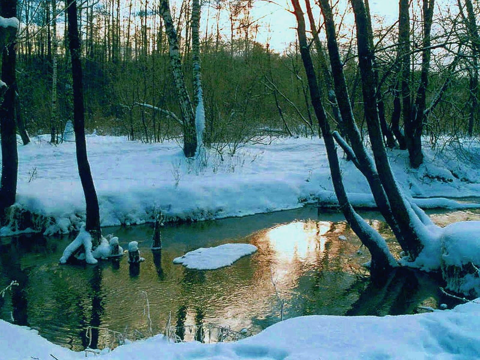 Фото природа зима весна 6