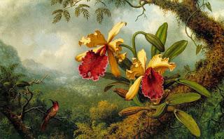 Paisajes Flores Orquideas Pintura Oleo