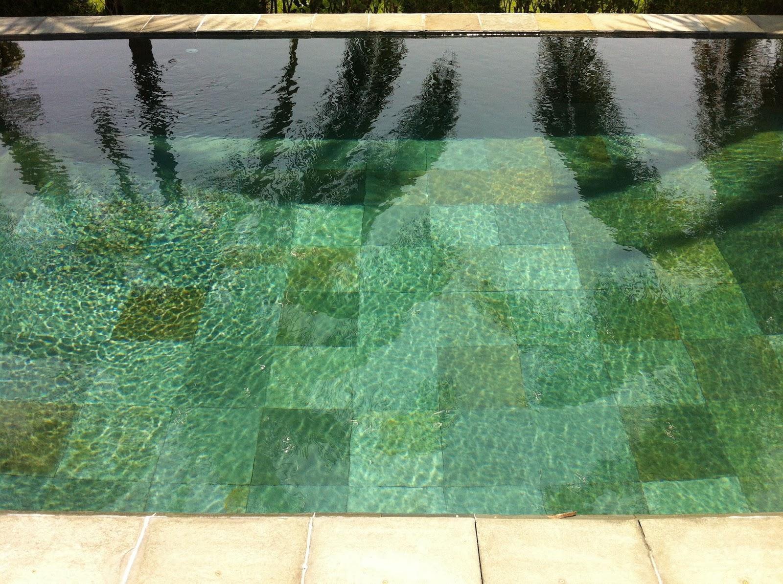 Construcci n de albercas for Construccion de piscinas en mexico