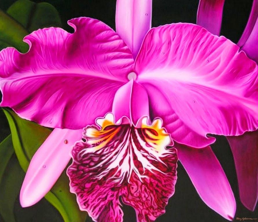 Significado de Orquídea O que é, Conceito e Definição - Fotos De Tatuagens De Flores-Orquideas