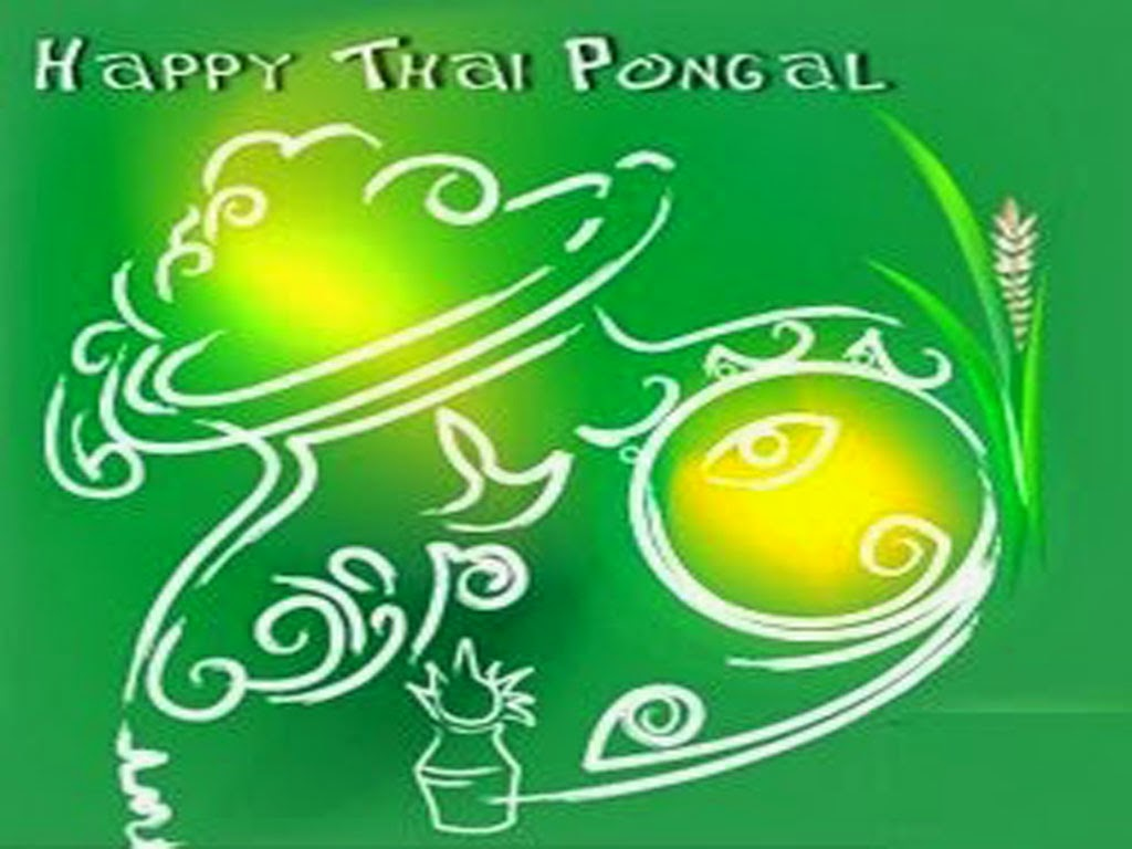 Pongal Greetings HD Free Download | Free Pongal Wishes Greetings HD ...
