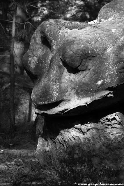 La Grenouille, Rer du Potala, Trois Pignons, (C) 2014 Greg Clouzeau