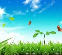 如何尋找宇宙本體的超生命力?如何讓我們有限的生命更加延長?如何讓生病的體質得到改善,甚至獲得永遠的健康?如何將煩惱的心,提升為愉快的心?這些都是禪行者所應該去追求的目標。以太陽為例,太陽的生命力是毫不保留,非常公平的照在整個地球上,讓所有地球上的生物都能夠得到陽光,得到生命的能源,而維持生命。如果沒有生命能源就沒有生物,當然,我們也沒有蔬菜、魚、肉等糧食可以吃。這些生物都是直接得到陽光、水以及地底的能量,又間接被我們吸收來維持生命,不過這些生物的生命本來就是有限的,我們吃進這些有限的生命體,轉換能量來維持自身的生命,所以我們的生命也是有限的,道理就在於此。除非你能夠直接取得太陽的生命或其他能量,或是在夜間可以得到月光的能量,而不用經過食物來轉換能量以維持生命,否則是不能得到真正超生命的力量的,這是每一位禪行者都應具備的智慧。──摘自《禪與禪的生命力》禪天下出版