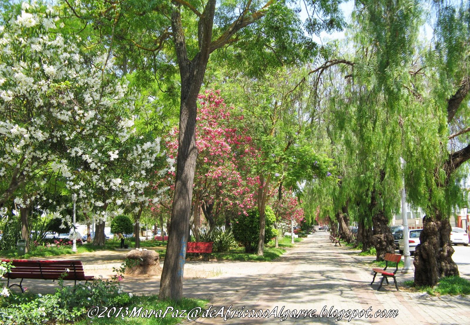 Jardim em Silves