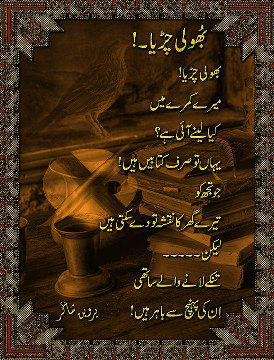Bholi Chirya by Parveen Shakir  - Designed Urdu Poetry - Urdu Poetry Shayari - Urdu Poetry - Urdu Ghazal - Urdu Nazam - Poetry in Pictures