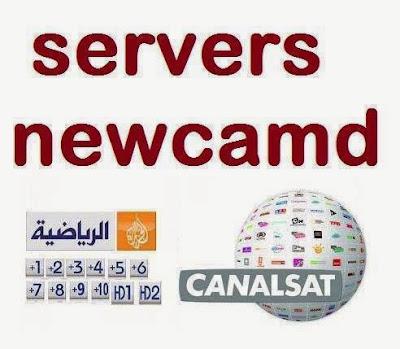 1453432_682462591772040_609760382_n
