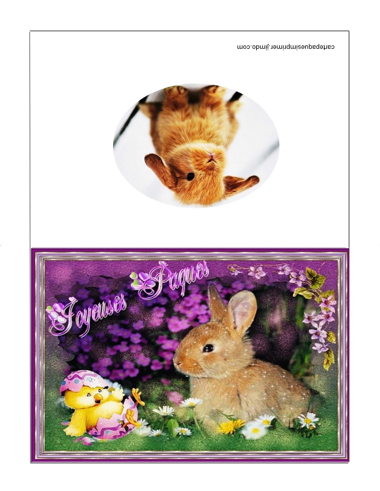 Carte de voeux de paques fashion designs - Image de paques a imprimer ...