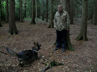 A dog barking at a man backed into a tree in a wood