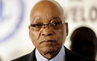 Stay away from Nigeria, NANS tells Jacob Zuma
