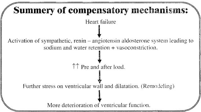 Compensatory mechanisms in heart failure