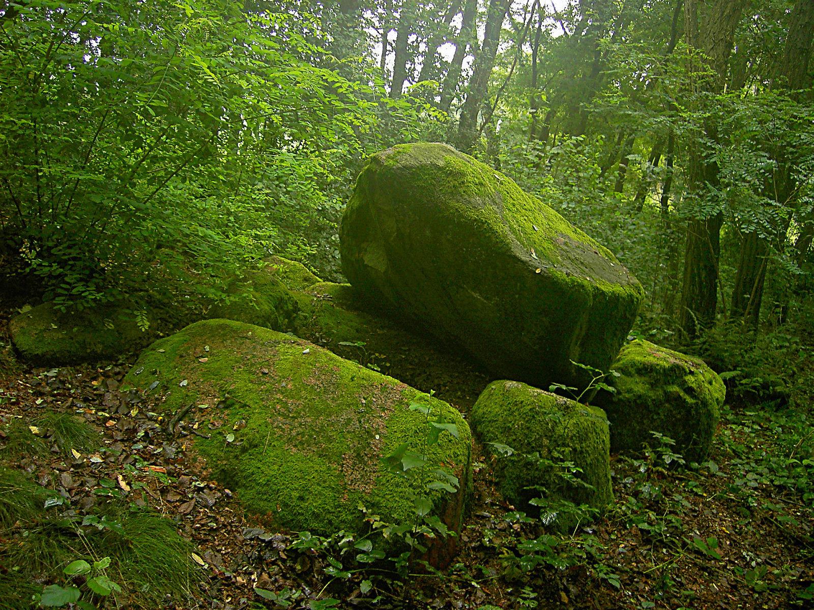 http://2.bp.blogspot.com/-Ix9K9VwZz_I/UD3jPEzl_nI/AAAAAAAABXM/VxA0FLQ8L50/s1600/hd-wallpaper-greenery.jpg