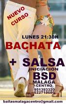 NUEVO CURSO DE INICIACIÓN DE BACHATA + SALSA EN BSD MÁLAGA CENTRO