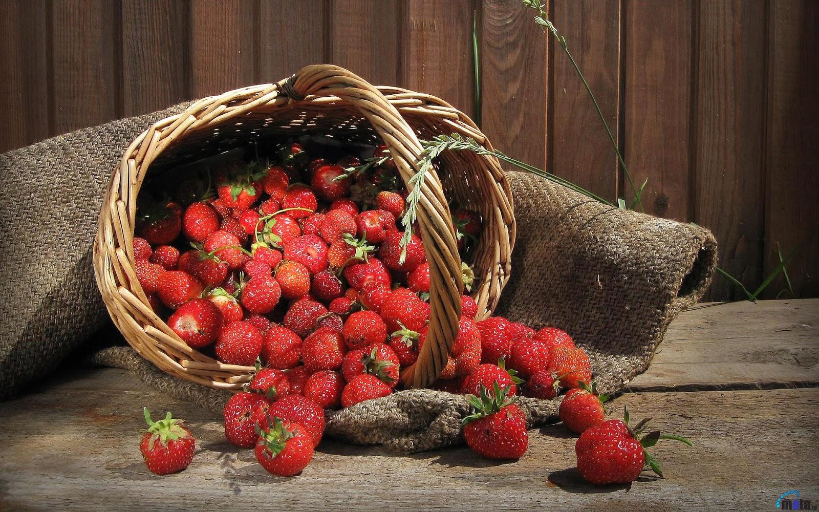 "<img src=""http://2.bp.blogspot.com/-IyJHkqY98Y0/UuqwYc372fI/AAAAAAAAKuQ/WZjNn-77Qi0/s1600/strawberry-wallpaper.jpg"" alt=""strawberry wallpaper"" />"