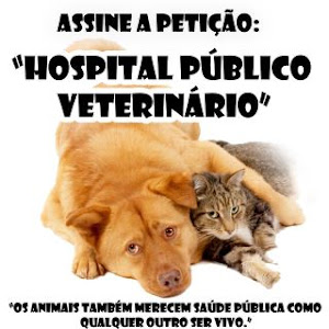 /www.peticao24.com/forum/post/452649#messageBox