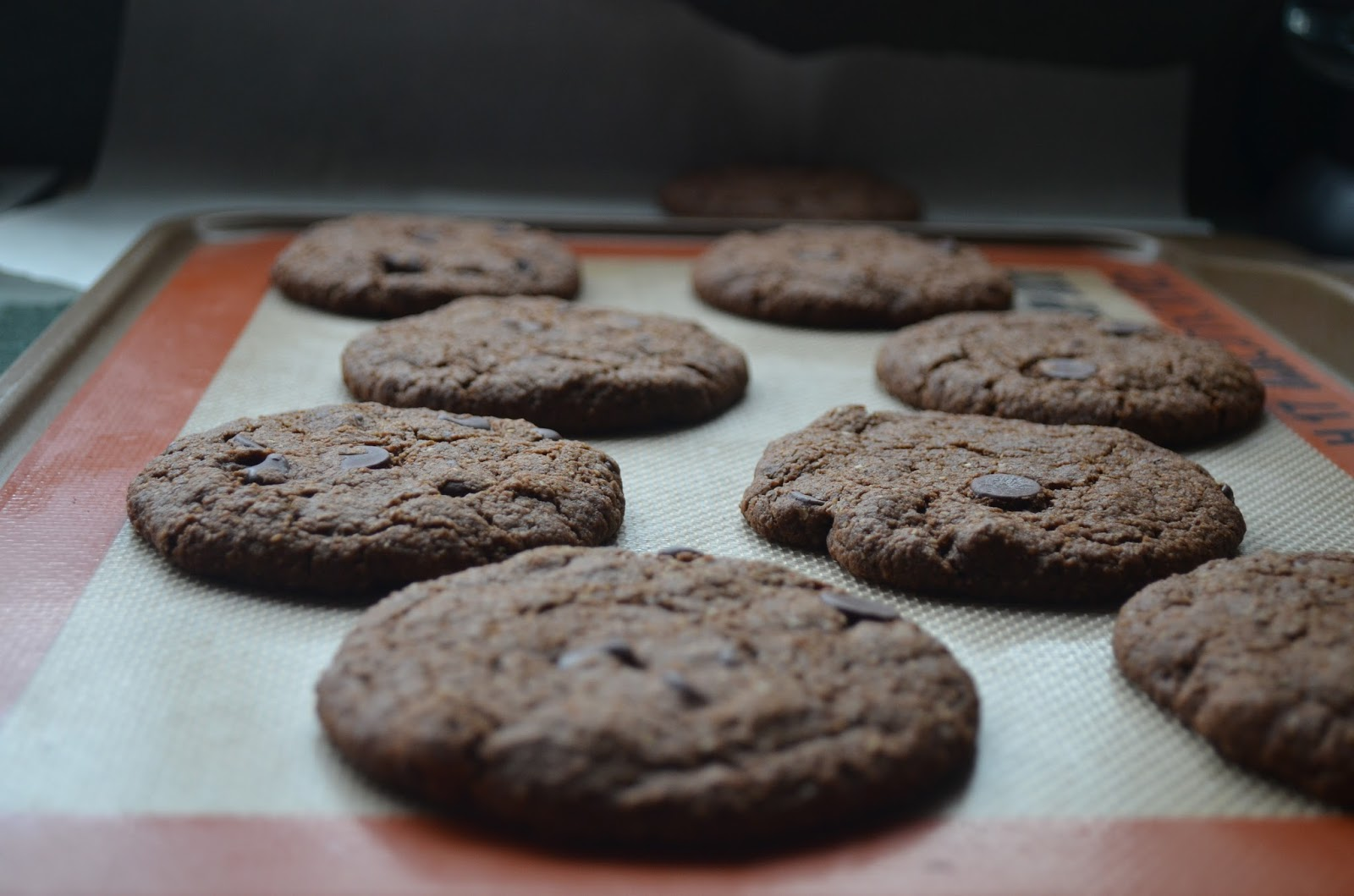 Double Chocolate Oat Cookies