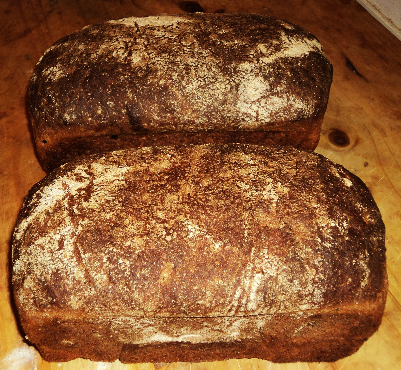 Back To The Basics Ezekiel Bread