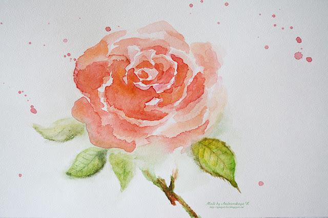 Роза. Рисунок акварелью. Автор Андриевская Надежда
