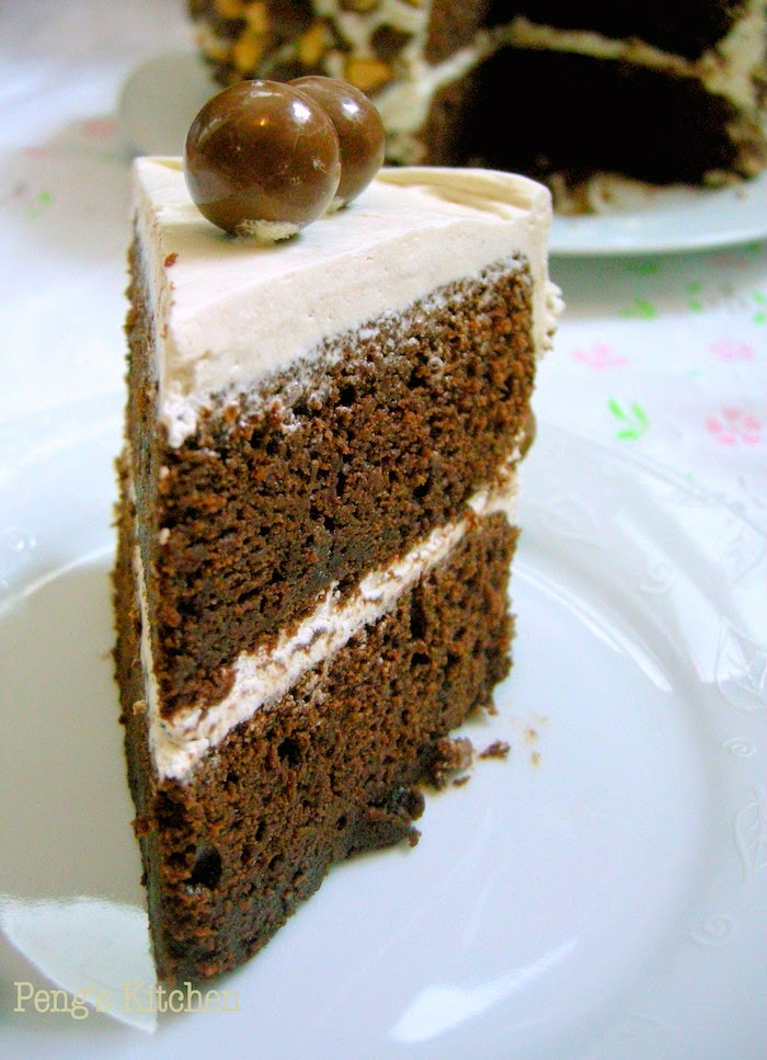 Peng's Kitchen: Triple Malt Chocolate Cake
