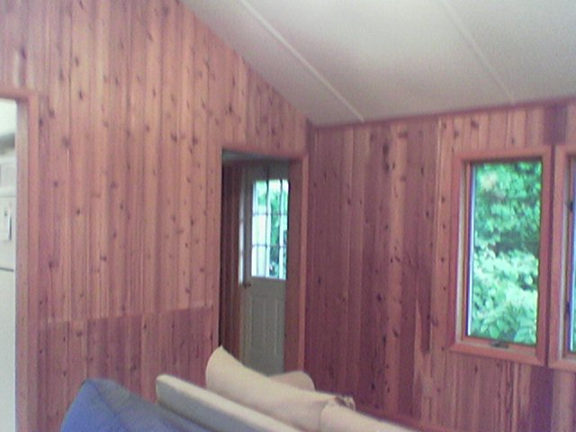 painting wood paneling white