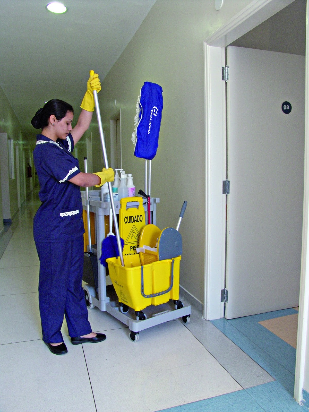 Limpeza Banheiro Hospitalar : Limpeza hospitalar vaneli e servi?os