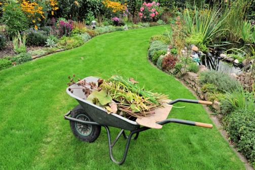 Dise os y proyectos de jardiner a for Servicio de jardineria df