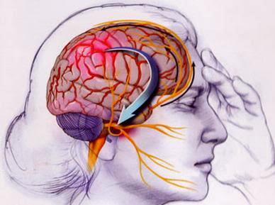 http://2.bp.blogspot.com/-IzcHmdX_G6w/Uu0hQEBVg0I/AAAAAAAABMM/dLymYSUQxvM/s1600/migraine.jpg