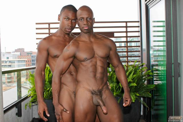 Black gay couple porn