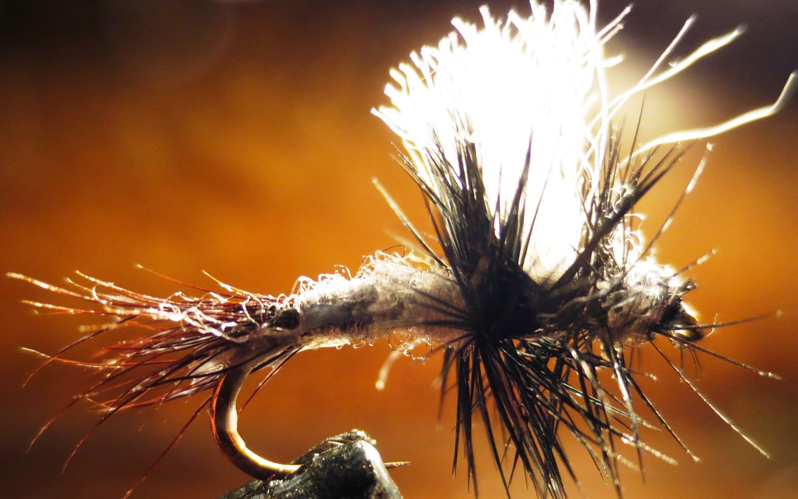 Idaho Fly Fishers Blog