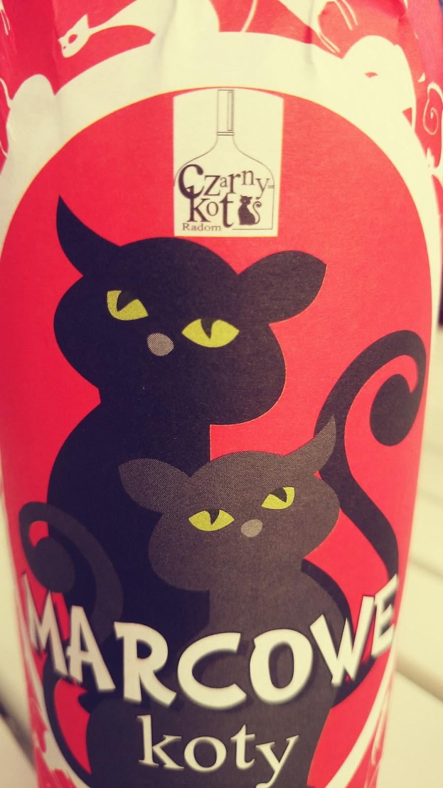 Marcowe koty piwo