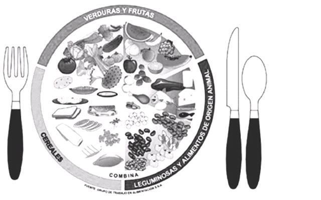 Dibujo del plato del buen comer para colorear - Imagui