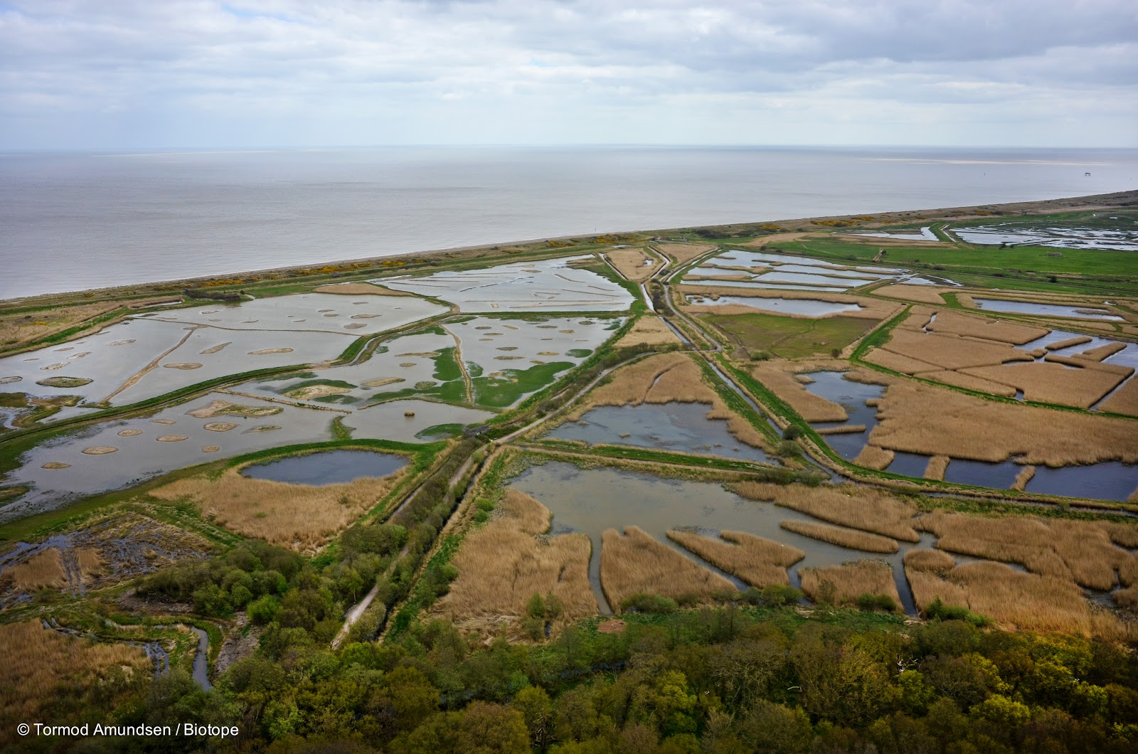 Minsmere RSPB Reserve, stock image. Image of site, nature