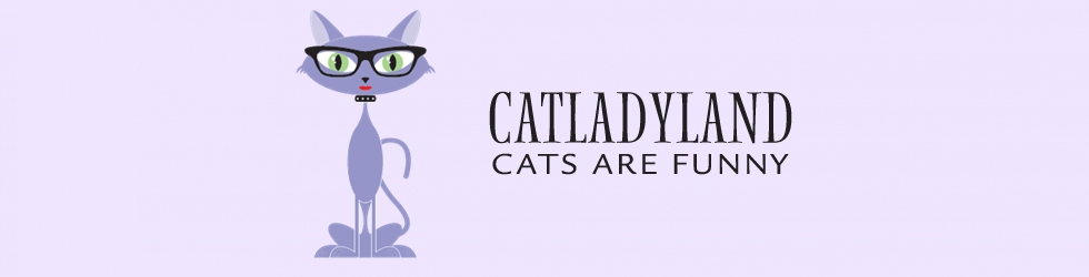 Catladyland: Cats are Funny