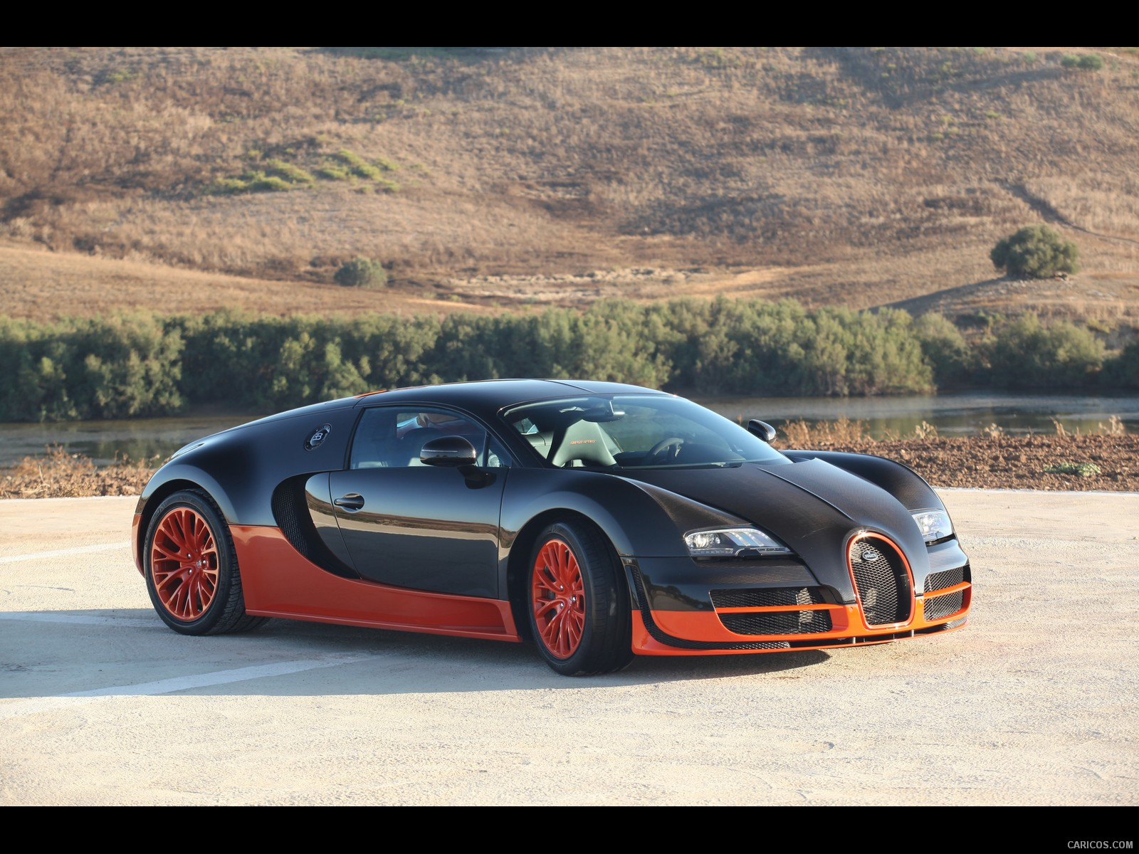 2013 bugatti veyron exotic cars photo 25063380 fanpop 2016 2017 best cars review. Black Bedroom Furniture Sets. Home Design Ideas