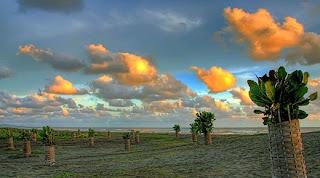 Fotografi Banjarnegara gilar-gilar