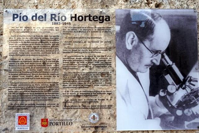 Pío del Río Ortega