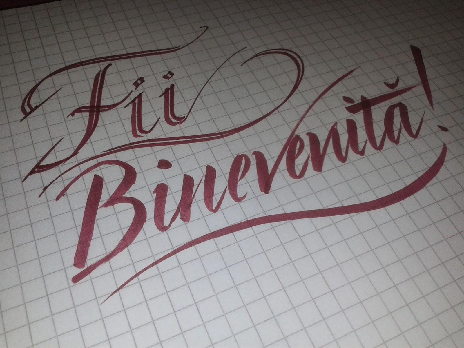 adio caligrafie, fii binevenita, caligrafie, caligraf, scris de mana, scoala, scris, curs de caligrafie