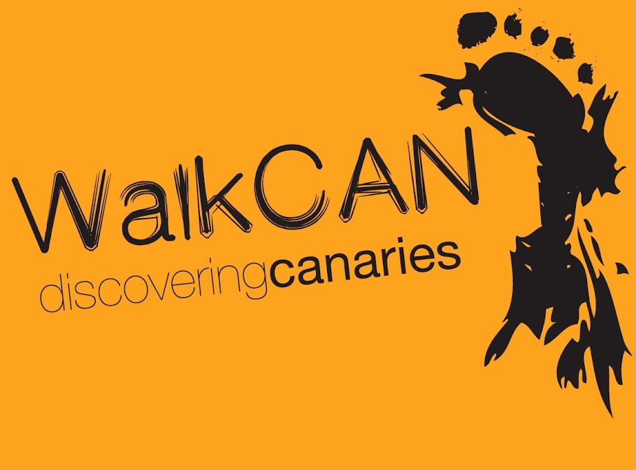WalkCAN Discovering Canaries