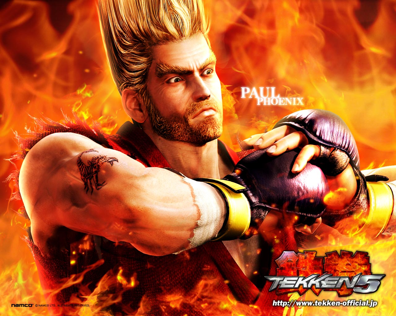 GAMEZONE: Tekken 6 Paul wallpapers
