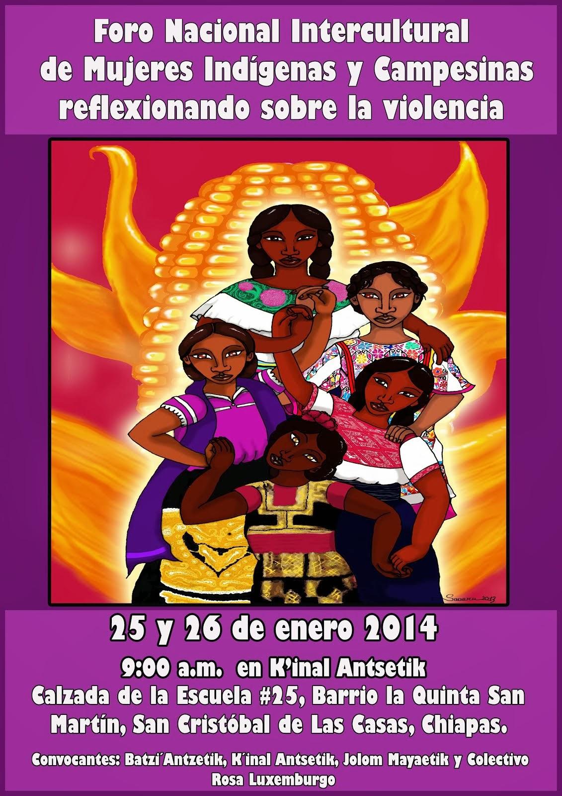 FORO NACIONAL: MUJERES INDÍGENAS Y CAMPESINAS REFLEXIONAN SOBRE LA VIOLENCIA. 25 Y 26 ENERO 2014