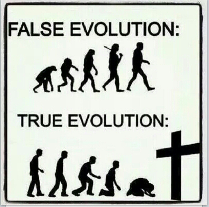 christianity vs evolution How the bible and evolution conflict if jesus was not the redeemer who died for our sins, and this is what evolution means, then christianity is nothing.