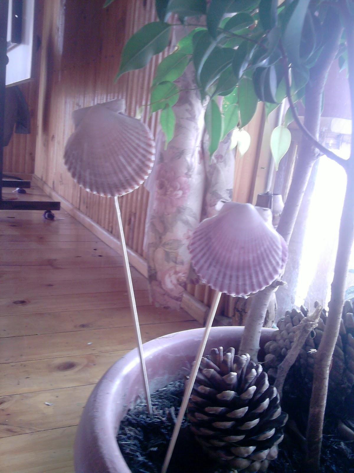 cree unas hermosas flores de conchitas....para adornar las plantas en ...