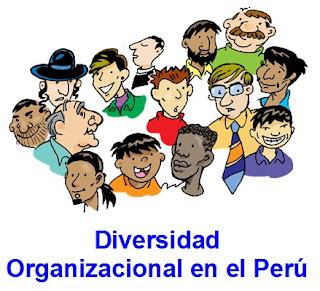 diversidad organizacional en el perú