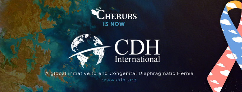 CDH International