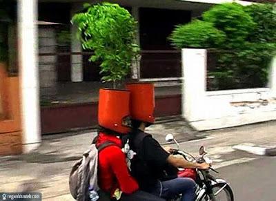 Images comiques et surprenantes Art - Casque moto v13